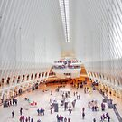 a must see - The Oculus by Stephen Burke