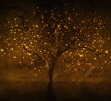 Golden times by Imber