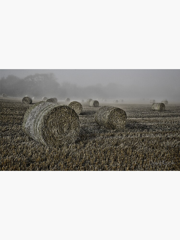 Misty Morning by DougCook
