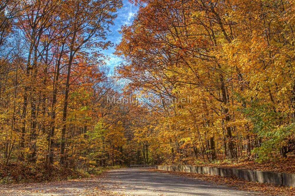Autumn's Gold by Marilyn Cornwell