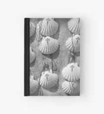 Scallop shells Hardcover Journal