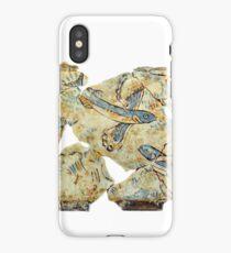 ancient greek fresco iPhone Case/Skin