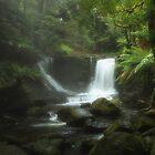 Horseshoe Falls, Tasmania by Ursula Rodgers