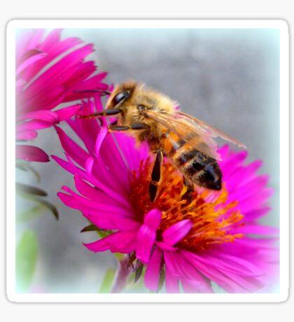 Wandering Bee Sticker