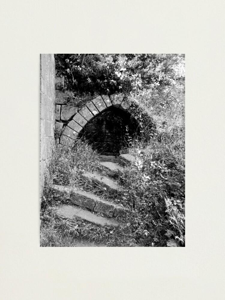 Alternate view of Jervaulx Abbey Photographic Print