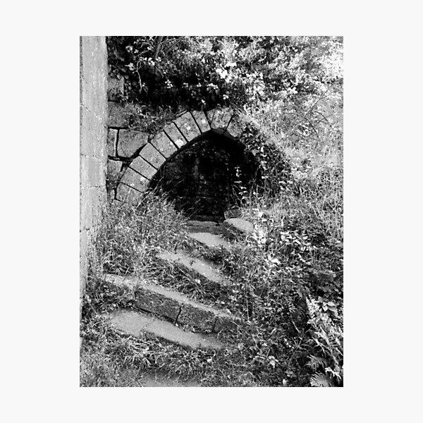 Jervaulx Abbey Photographic Print