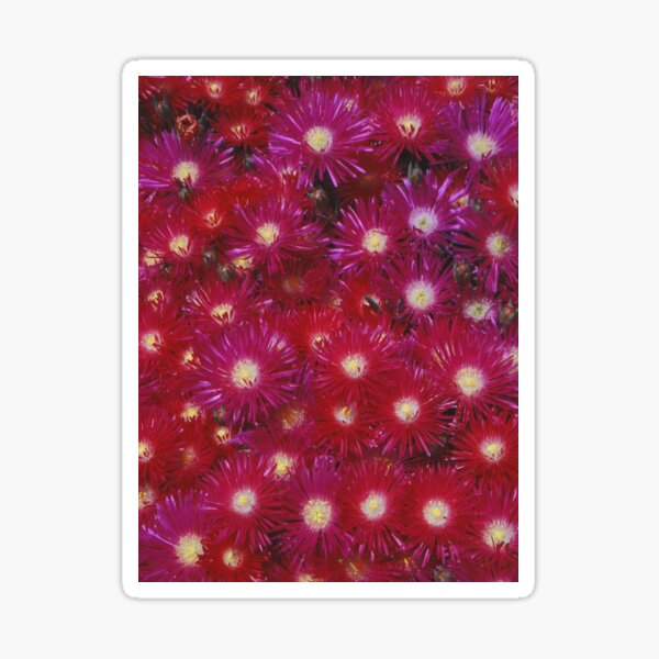 Ruby Flowers Sticker