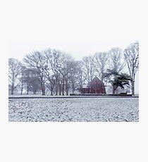 Snow White - Uralla NSW Photographic Print