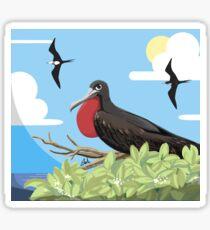 Bornean Birds - GREAT FRIGATEBIRD Sticker