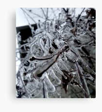 Nature's Ice Sculptures Canvas Print
