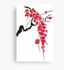 Pink flowers of sakura  Canvas Print