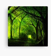 green forest zelda Canvas Print