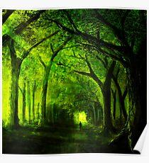 green forest zelda Poster