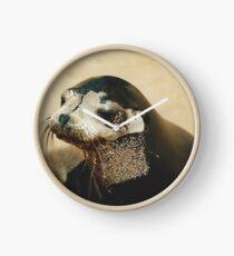 Fur Seal Clock