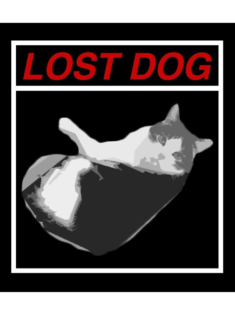 Lost Dog by jacub