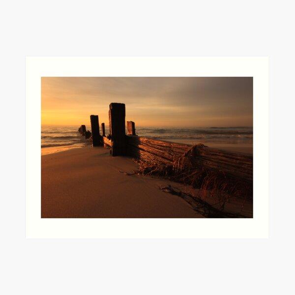Balnarring Beach Groyne Sunrise Art Print