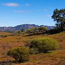View towards Wilpena Pound, Flinders Ranges, South Australia. (Study #6) by johnrf
