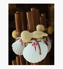 Scallop shell and gourd walking sticks Photographic Print