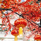 Chinese new year decoration by sleepwalker