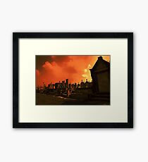with a trumpet call..... Framed Print