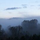 Autumn evening mist by Richard McCaig