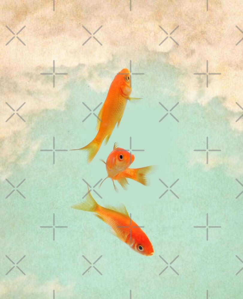Goldfish in the sky by Vin  Zzep