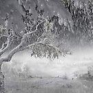 Snowfall by Igor Zenin