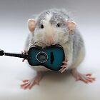 My acoustic guitar :) by Ellen van Deelen