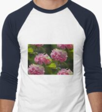 hydrangea in the garden Men's Baseball ¾ T-Shirt