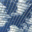 Glass Roof by Glen Allen