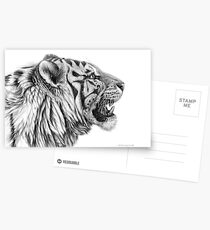 White Tiger profile G01 by schukina Postcards