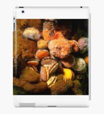Colourful Bivalves iPad Case/Skin