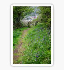 Spring Woodland Walk, Solva, Pembrokeshire Sticker