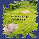 INSPIRATIONAL STEPPING STONE PATH TO SUCCESS by Nicola Furlong