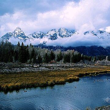 Snake River Overlook, Grand Teton National Park by DanielleDodds