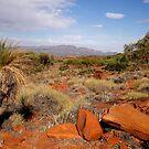 Australian Outback Desert Landscape by John Wallace