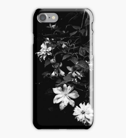 Artic Gueen Clematis in Black and White iPhone Case/Skin