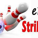 eBowler: Strike Zone by EyeMagined