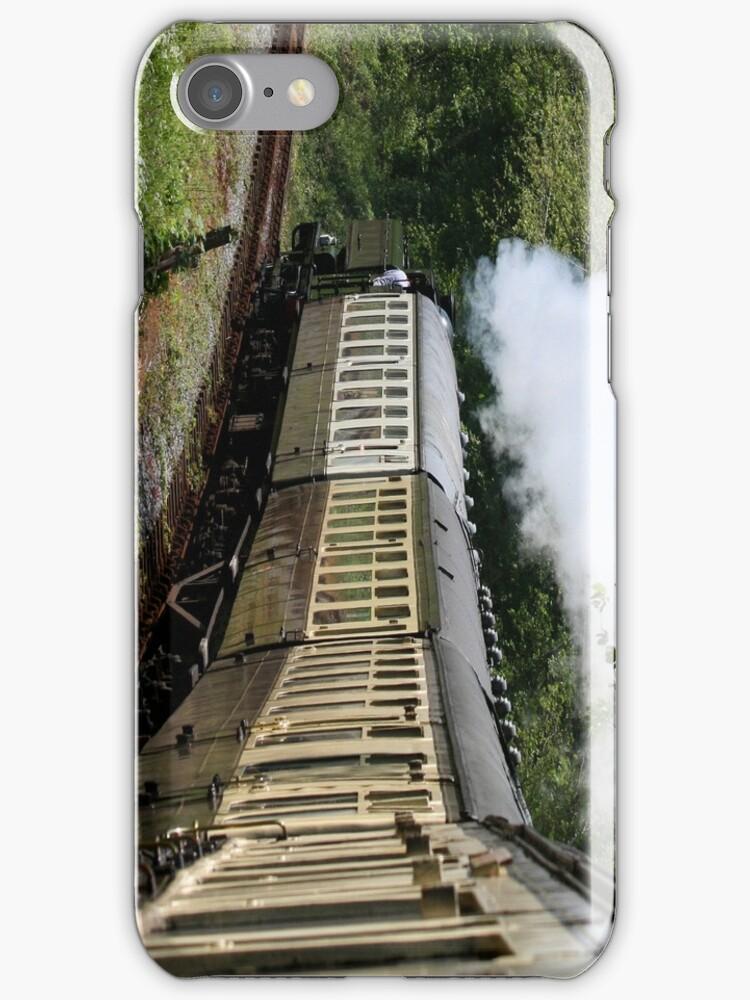 Steam Train in full steam by Sue Leonard