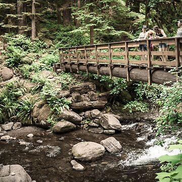 Triple Falls Bridge by babatim