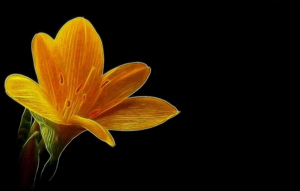 Fractal Lonely Blonde Flower by Atılım GÜLŞEN