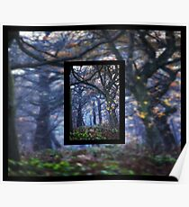 The Enchanted Forest Portrait with Double Border Poster