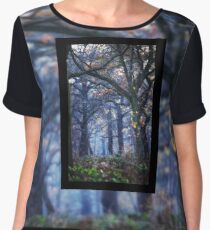 The Enchanted Forest Portrait with Single Border Women's Chiffon Top