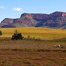 Wilpena Pound, South Australia. (Study #8) by johnrf