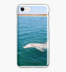 Dolphin Greeting iPhone Case/Skin