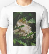 Forest wanderings Unisex T-Shirt