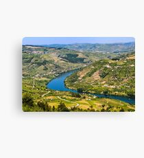 Banks of the Douro river, Portugal Canvas Print