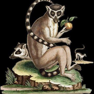 Lemur Artwork by dzdn