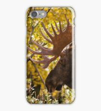 Wandering Moose iPhone Case/Skin