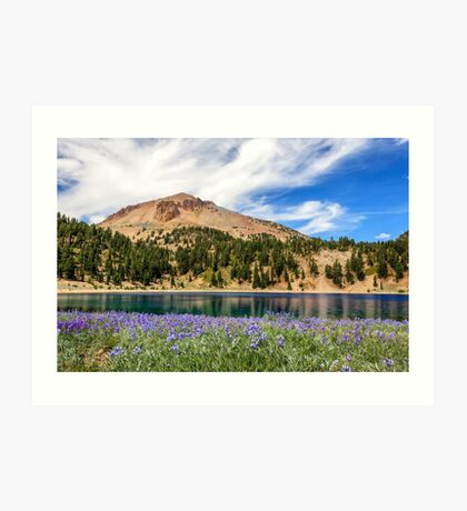 Lupines Lake And Lassen Art Print
